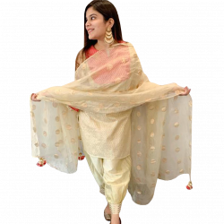 Formal Pure Chanderi Suit With Pure Organza Dupatta